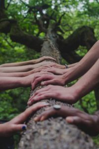 Kooperationen Zipf Heilpraktiker